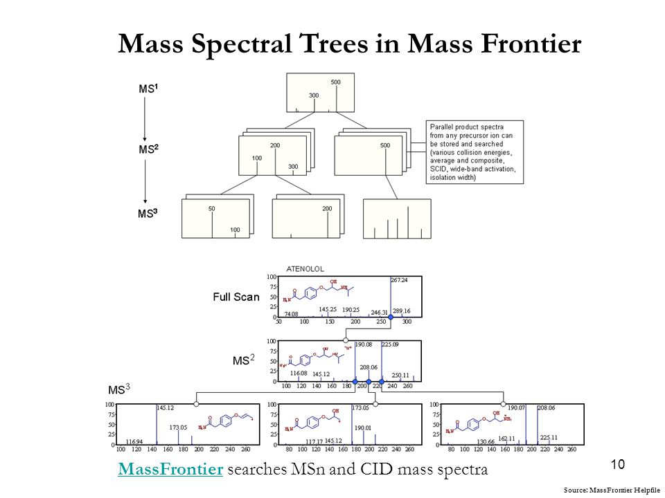 10 Mass Spectral Trees in Mass Frontier MassFrontierMassFrontier searches MSn and CID mass spectra Source: MassFrontier Helpfile