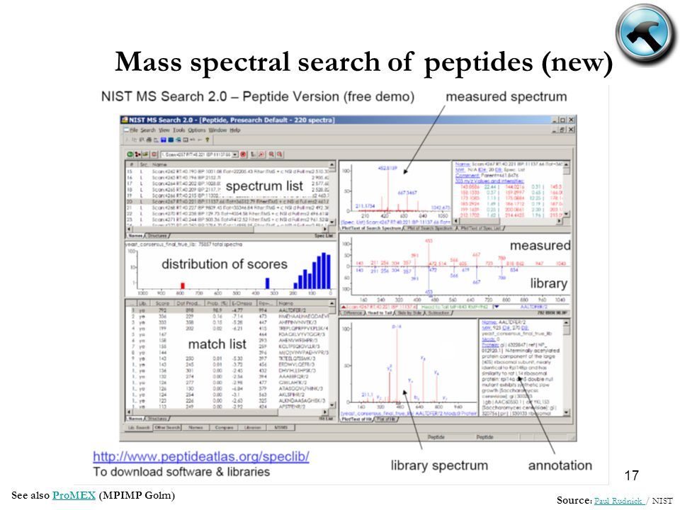 17 Mass spectral search of peptides (new) Source : Paul Rudnick / NISTPaul Rudnick See also ProMEX (MPIMP Golm)ProMEX