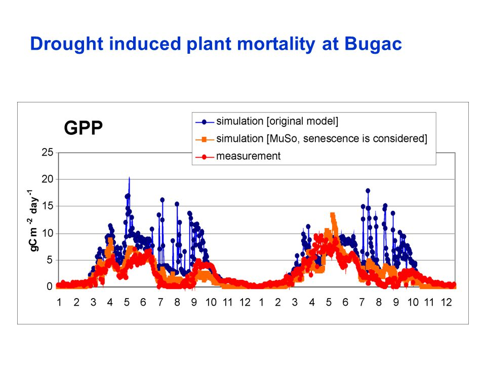 Drought induced plant mortality at Bugac