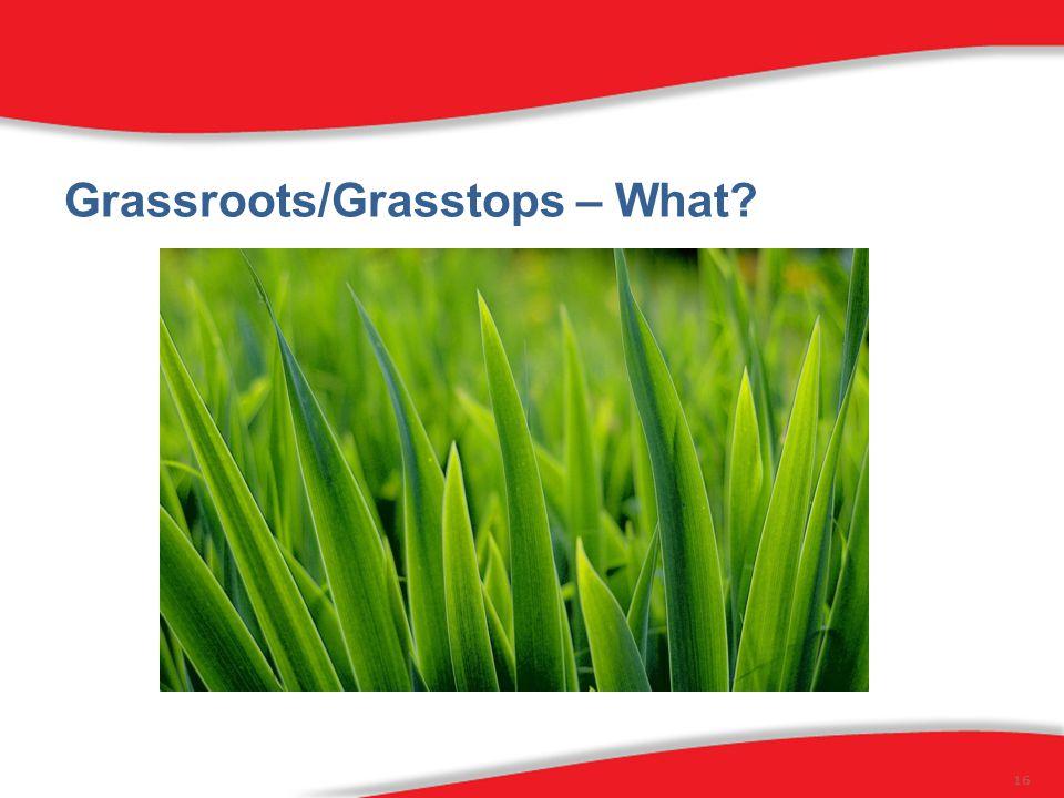 Grassroots/Grasstops – What? 16
