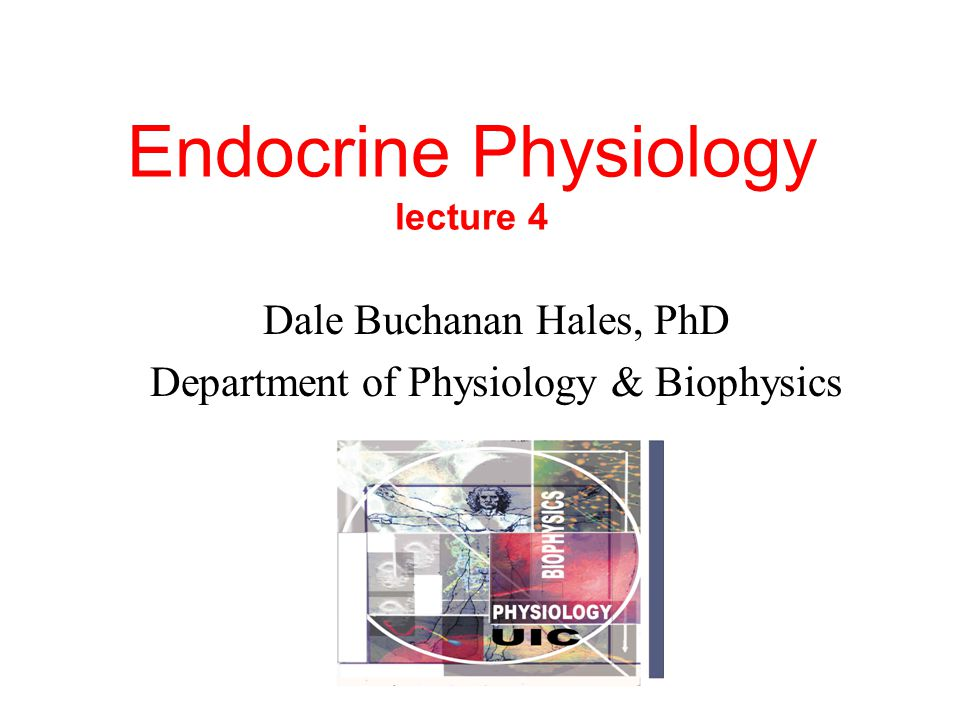 Endocrine Physiology lecture 4 Dale Buchanan Hales, PhD Department of Physiology & Biophysics