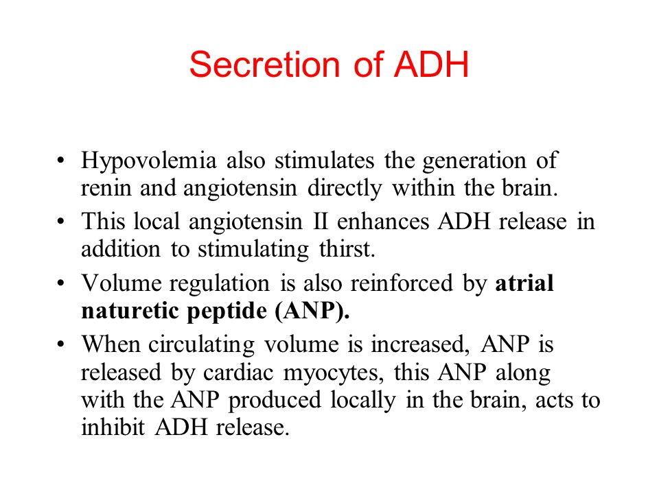 Hypovolemia also stimulates the generation of renin and angiotensin directly within the brain. This local angiotensin II enhances ADH release in addit