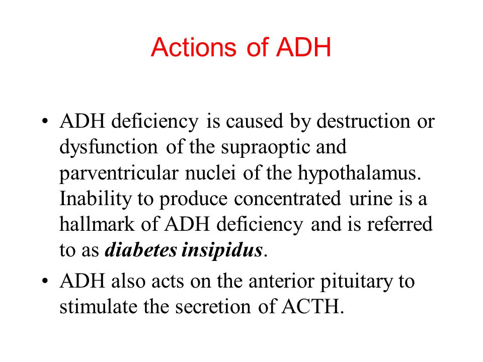 ADH deficiency is caused by destruction or dysfunction of the supraoptic and parventricular nuclei of the hypothalamus.