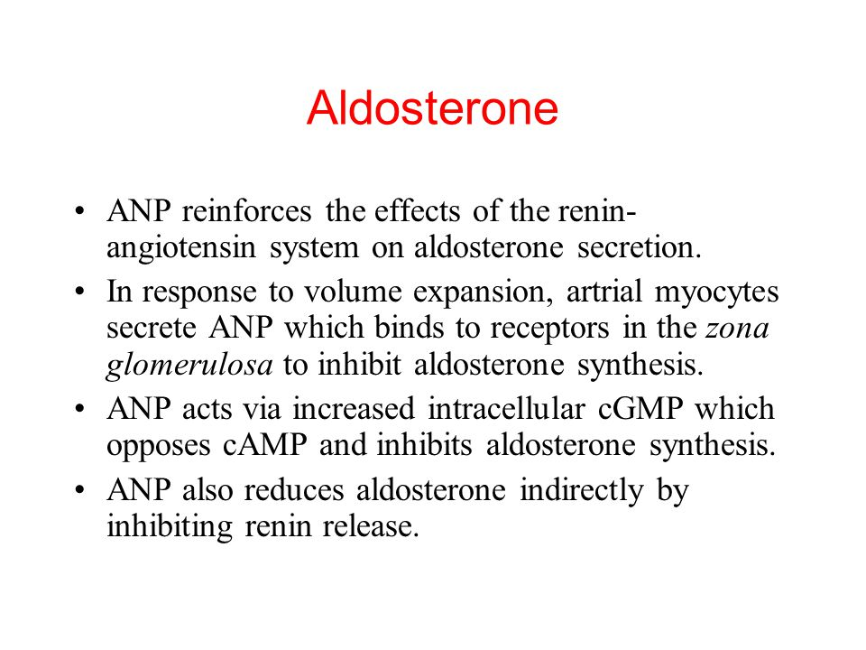 ANP reinforces the effects of the renin- angiotensin system on aldosterone secretion. In response to volume expansion, artrial myocytes secrete ANP wh