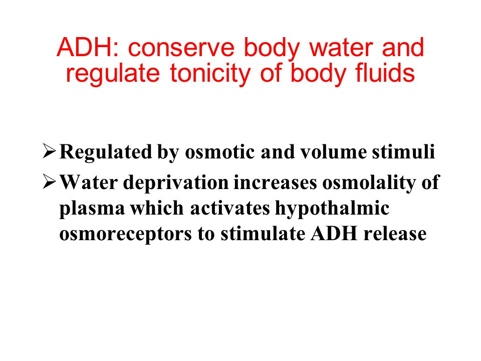 ADH: conserve body water and regulate tonicity of body fluids  Regulated by osmotic and volume stimuli  Water deprivation increases osmolality of plasma which activates hypothalmic osmoreceptors to stimulate ADH release