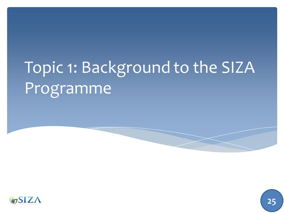 Topic 1: Background to the SIZA Programme 25