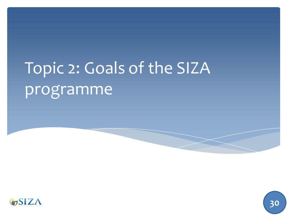Topic 2: Goals of the SIZA programme 30