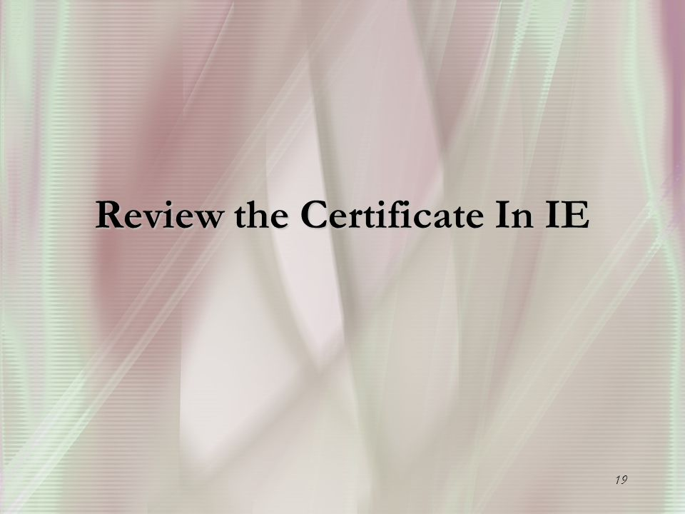 19 Review the Certificate In IE