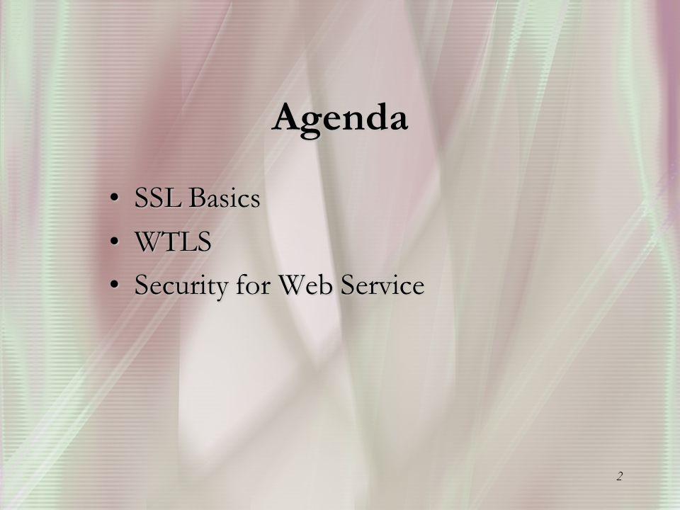 2 Agenda SSL Basics SSL Basics WTLS WTLS Security for Web Service Security for Web Service