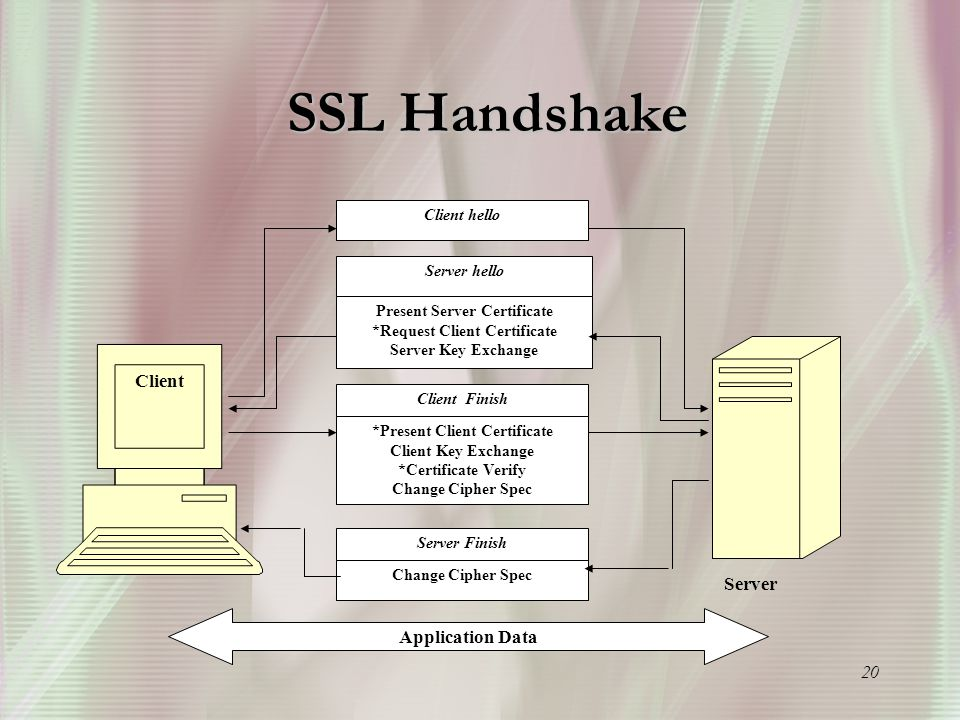 20 SSL Handshake Client hello Server hello Present Server Certificate *Request Client Certificate Server Key Exchange Client Finish *Present Client Certificate Client Key Exchange *Certificate Verify Change Cipher Spec Server Finish Change Cipher Spec Client Server Application Data