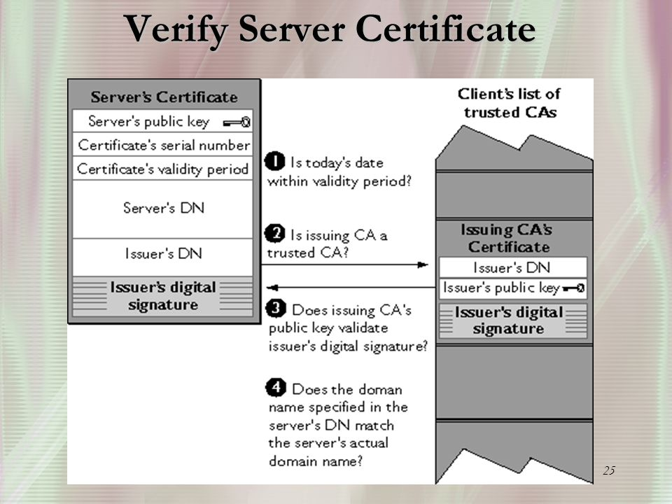 25 Verify Server Certificate
