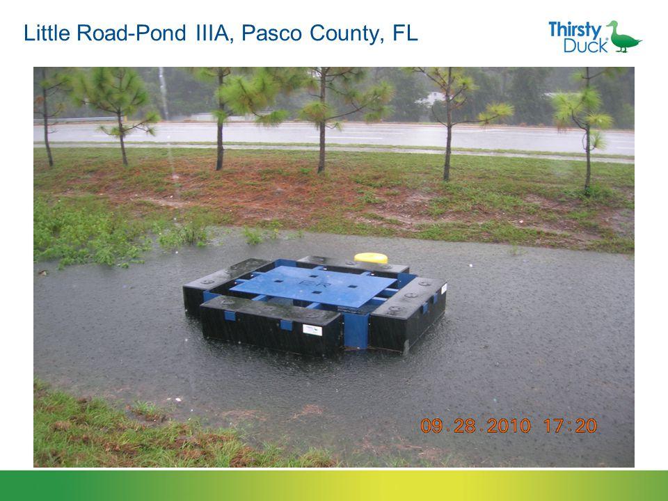 Little Road-Pond IIIA, Pasco County, FL