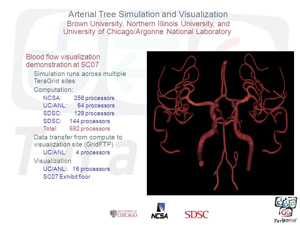 Arterial Tree Simulation and Visualization Brown University, Northern Illinois University, and University of Chicago/Argonne National Laboratory Blood flow visualization demonstration at SC07 Simulation runs across multiple TeraGrid sites Computation: NCSA: 256 processors UC/ANL: 64 processors SDSC: 128 processors SDSC: 144 processors Total: 592 processors Data transfer from compute to visualization site (GridFTP) UC/ANL: 4 processors Visualization UC/ANL: 16 processors SC07 Exhibit floor