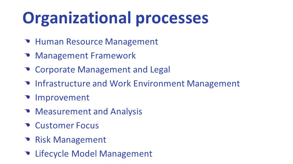 Human Resource Management Management Framework Corporate Management and Legal Infrastructure and Work Environment Management Improvement Measurement and Analysis Customer Focus Risk Management Lifecycle Model Management Organizational processes