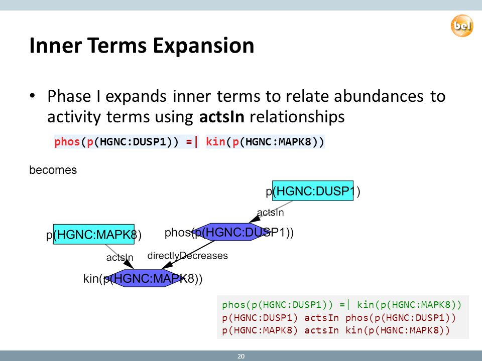 Inner Terms Expansion Phase I expands inner terms to relate abundances to activity terms using actsIn relationships becomes phos(p(HGNC:DUSP1)) =| kin