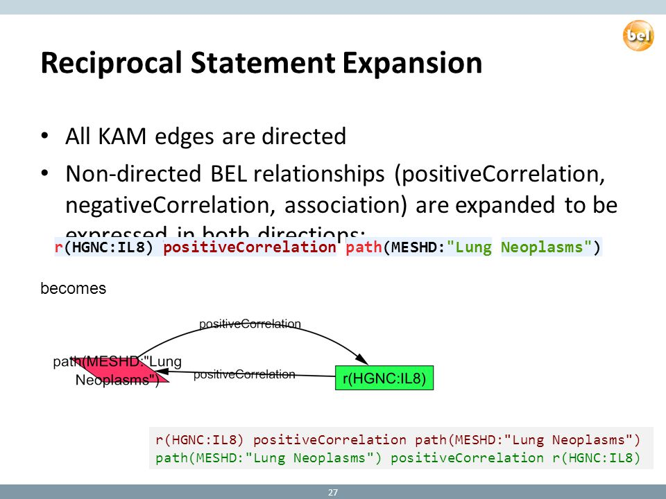 Reciprocal Statement Expansion All KAM edges are directed Non-directed BEL relationships (positiveCorrelation, negativeCorrelation, association) are expanded to be expressed in both directions: 27 r(HGNC:IL8) positiveCorrelation path(MESHD: Lung Neoplasms ) path(MESHD: Lung Neoplasms ) positiveCorrelation r(HGNC:IL8) becomes r(HGNC:IL8) positiveCorrelation path(MESHD: Lung Neoplasms ) path(MESHD: Lung Neoplasms ) positiveCorrelation r(HGNC:IL8)