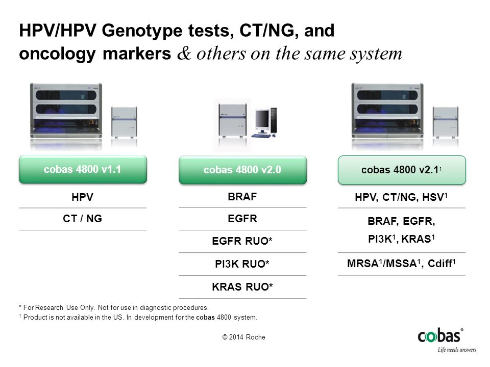 cobas HPV Test Parallel testing provides flexibility Source: Argent Global Services, 2012 24 HPV Samples 48 HPV Samples 72 HPV Samples 96 HPV Samples 1 hr2 hr3 hr4 hr5 hr6 hr7 hr8 hr9 hr10 hr 83 min120 min 16