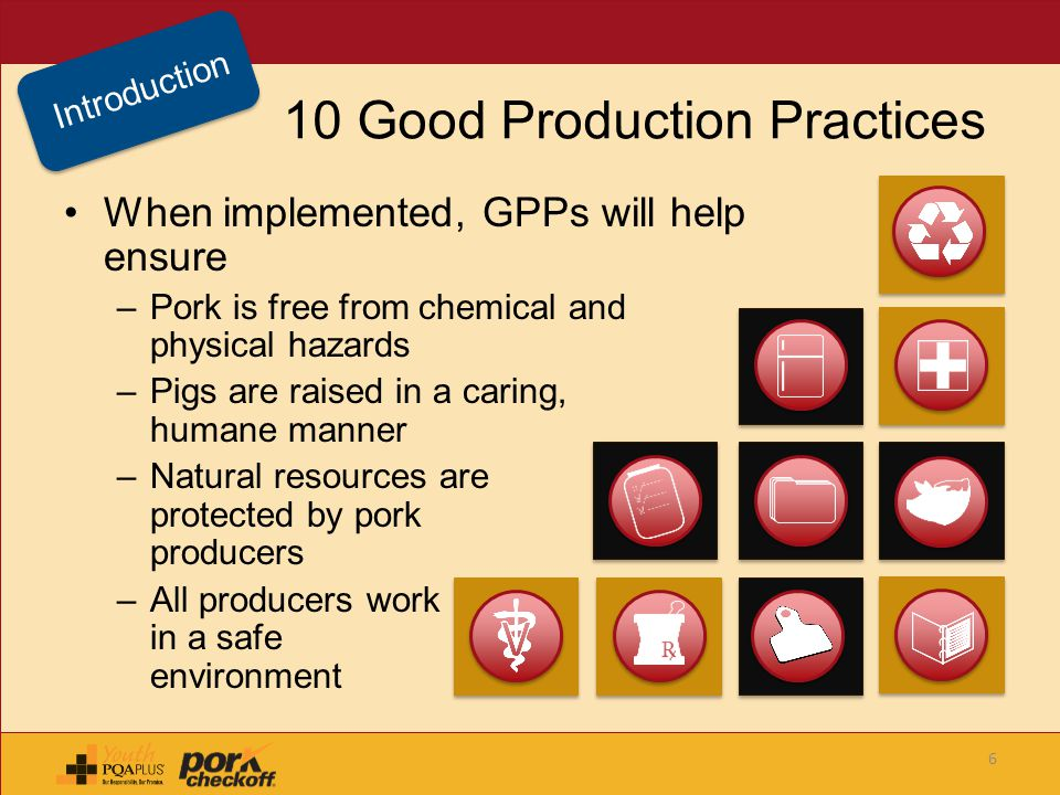 10 Good Production Practices When implemented, GPPs will help ensure –Pork is free from chemical and physical hazards –Pigs are raised in a caring, hu
