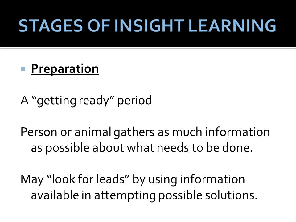 """ Preparation A """"getting ready"""" period Person or animal gathers as much information as possible about what needs to be done. May """"look for leads"""" by u"""