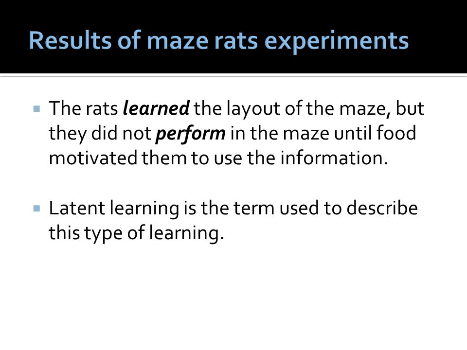 The rats learned the layout of the maze, but they did not perform in the maze until food motivated them to use the information.  Latent learning is
