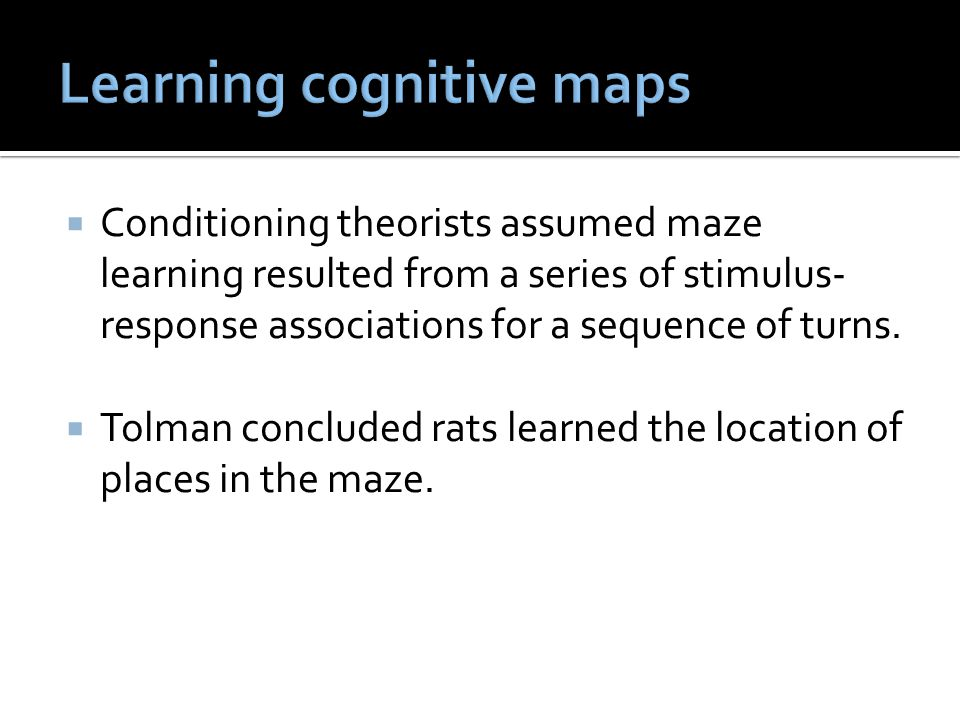  Conditioning theorists assumed maze learning resulted from a series of stimulus- response associations for a sequence of turns.  Tolman concluded r