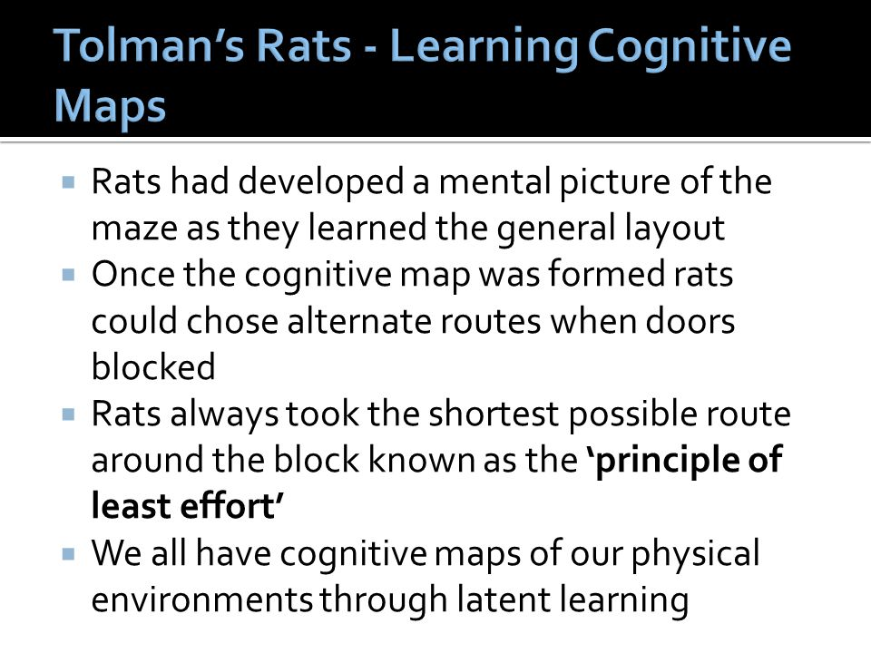  Rats had developed a mental picture of the maze as they learned the general layout  Once the cognitive map was formed rats could chose alternate ro