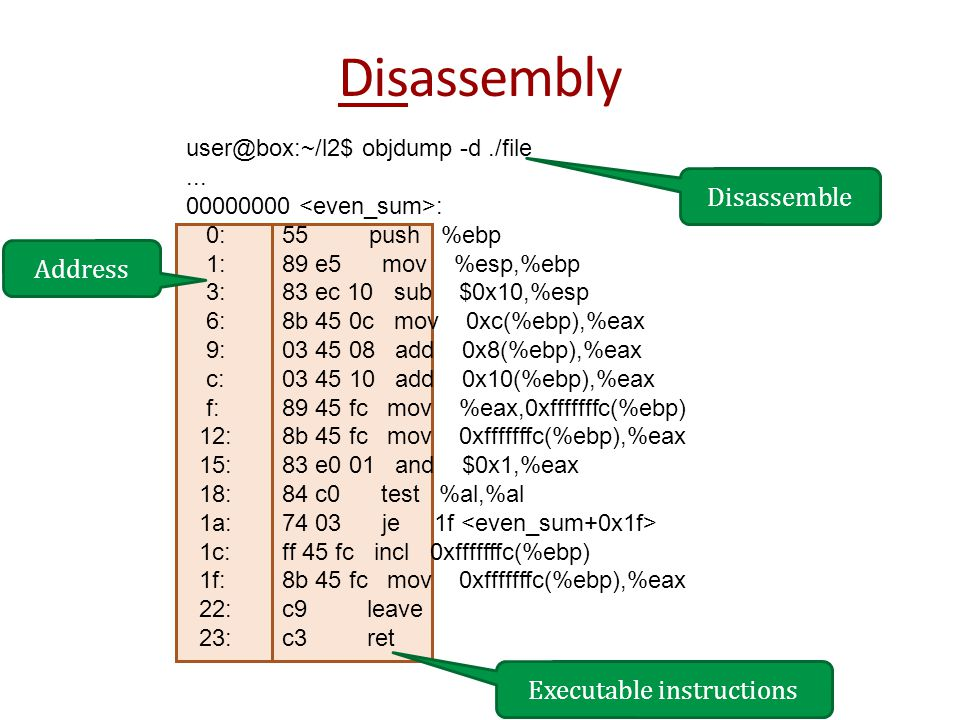 Disassembly user@box:~/l2$ objdump -d./file...