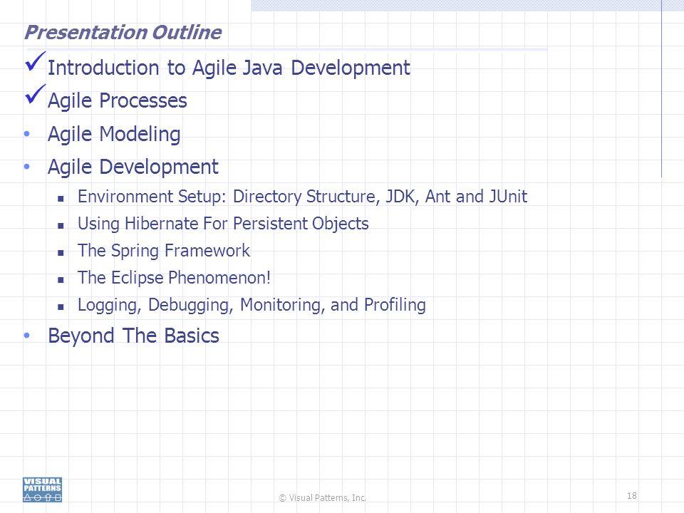 © Visual Patterns, Inc. 18 Presentation Outline Introduction to Agile Java Development Agile Processes Agile Modeling Agile Development Environment Se