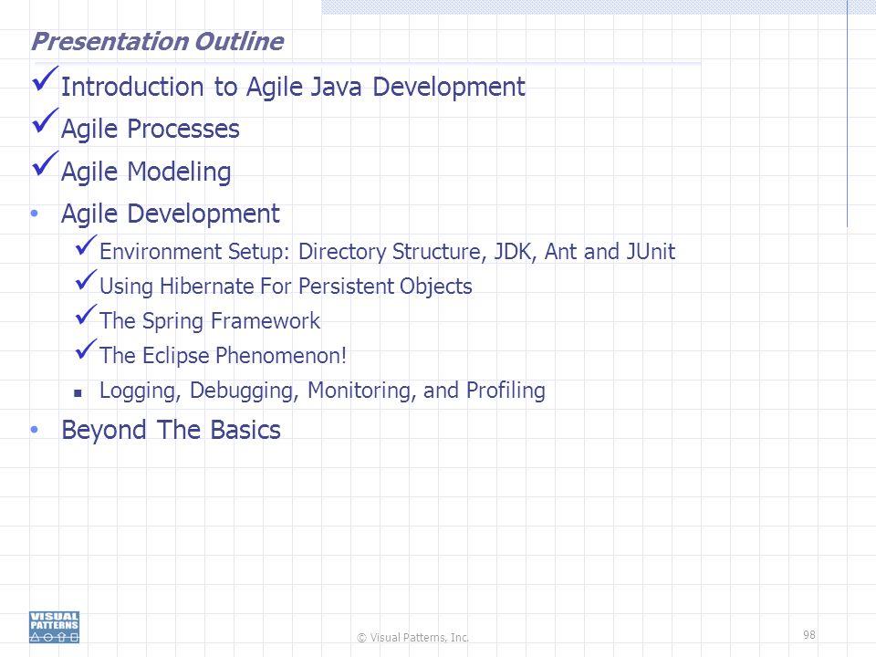 © Visual Patterns, Inc. 98 Presentation Outline Introduction to Agile Java Development Agile Processes Agile Modeling Agile Development Environment Se