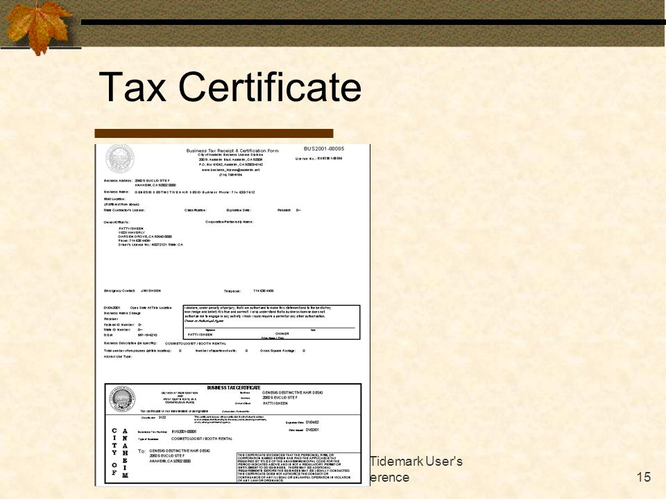 October 2001 Tidemark User s Conference15 Tax Certificate