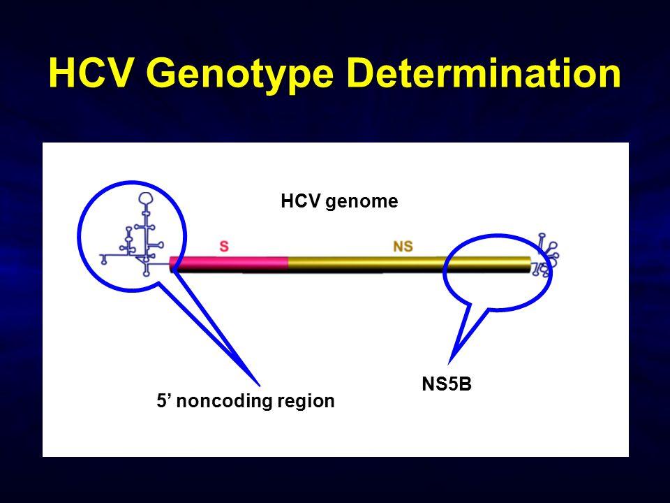 HCV Genotype Determination HCV genome NS5B 5' noncoding region