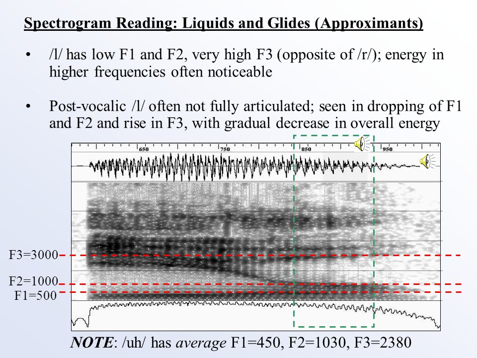 Spectrogram Reading: Liquids and Glides (Approximants) /h/ is usually unvoiced and has formant structure.