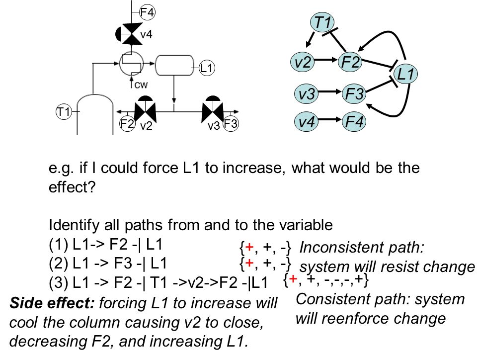 L1 L2 v4 v2v3 F3F2 F1 F4 F5 T1 v2F2 v3 v4F4 L1 F3 T1 e.g. if I could force L1 to increase, what would be the effect? Identify all paths from and to th