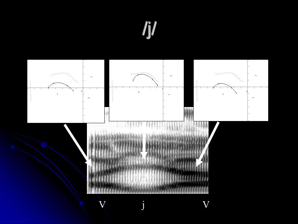 /j/ Place: palatal Place: palatal Acoustics Acoustics /i/-like formant frequencies /i/-like formant frequencies F1 ~ 300 Hz F1 ~ 300 Hz F2 ~ 2200 Hz F