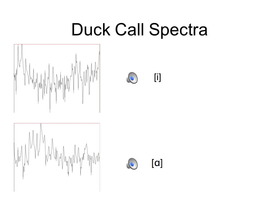 Duck Call Spectrograms [i]
