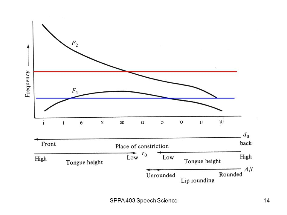 SPPA 403 Speech Science13 Tf32 example