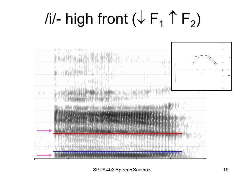 SPPA 403 Speech Science18 /a/ - low back (  F 1  F 2 )