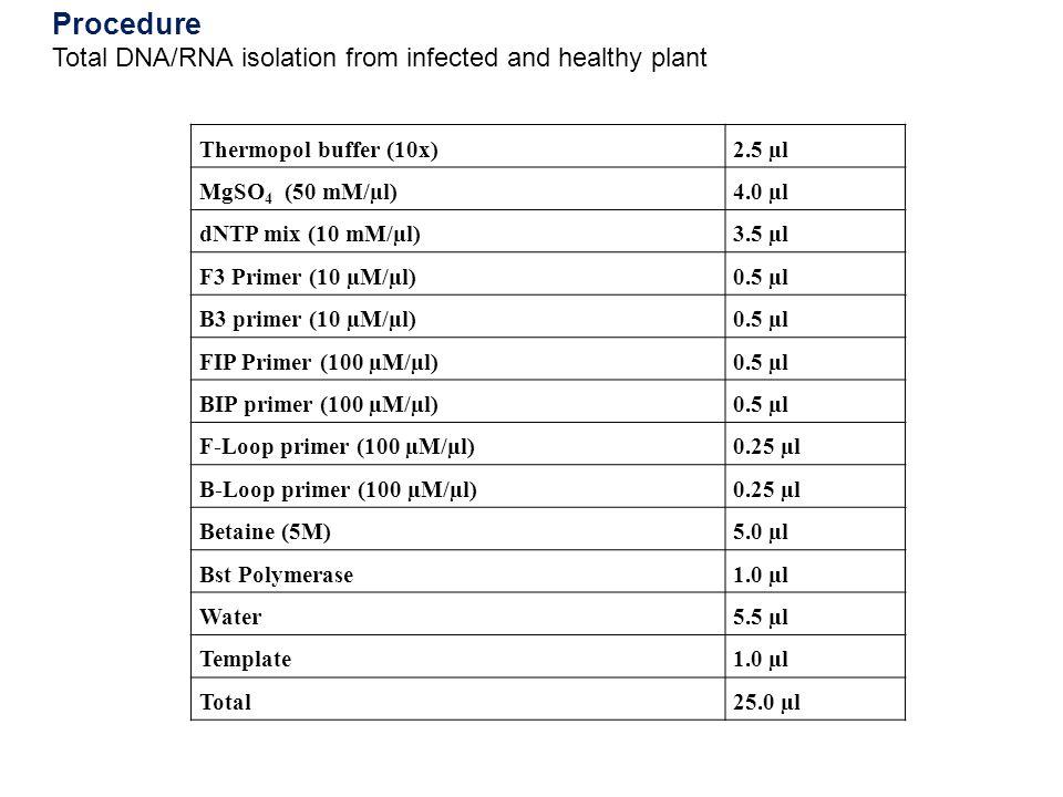 Thermopol buffer (10x)2.5 µl MgSO 4 (50 mM/µl)4.0 µl dNTP mix (10 mM/µl)3.5 µl F3 Primer (10 µM/µl)0.5 µl B3 primer (10 µM/µl)0.5 µl FIP Primer (100 µ