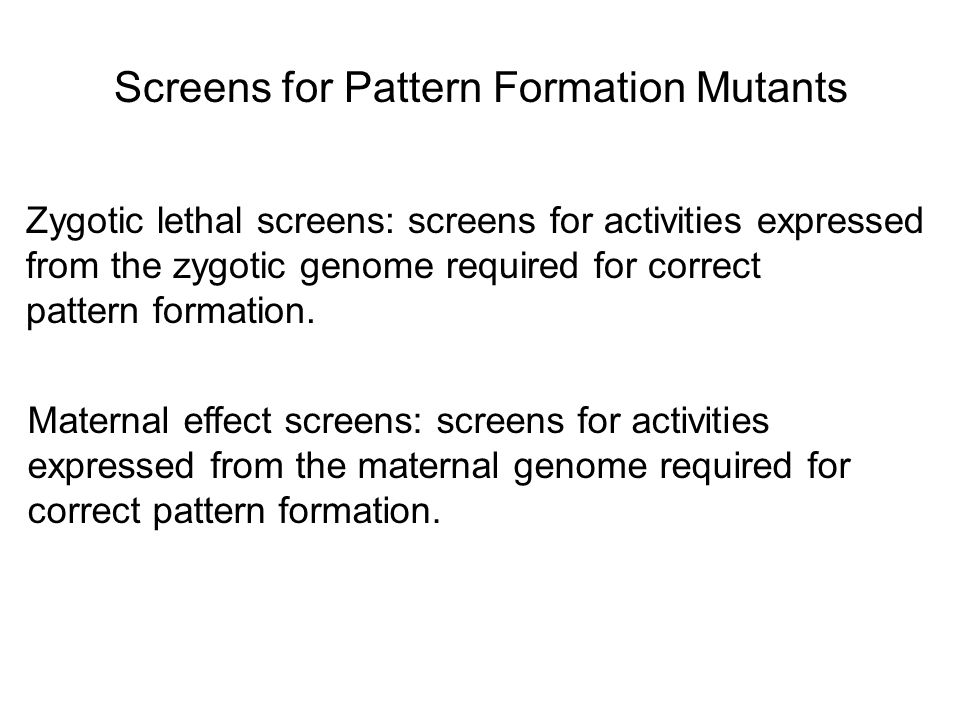 Screens for Pattern Formation Mutants Zygotic lethal screens: screens for activities expressed from the zygotic genome required for correct pattern fo