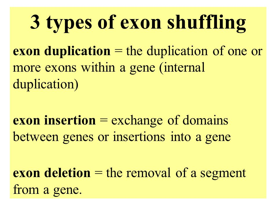 4: Genome evolution