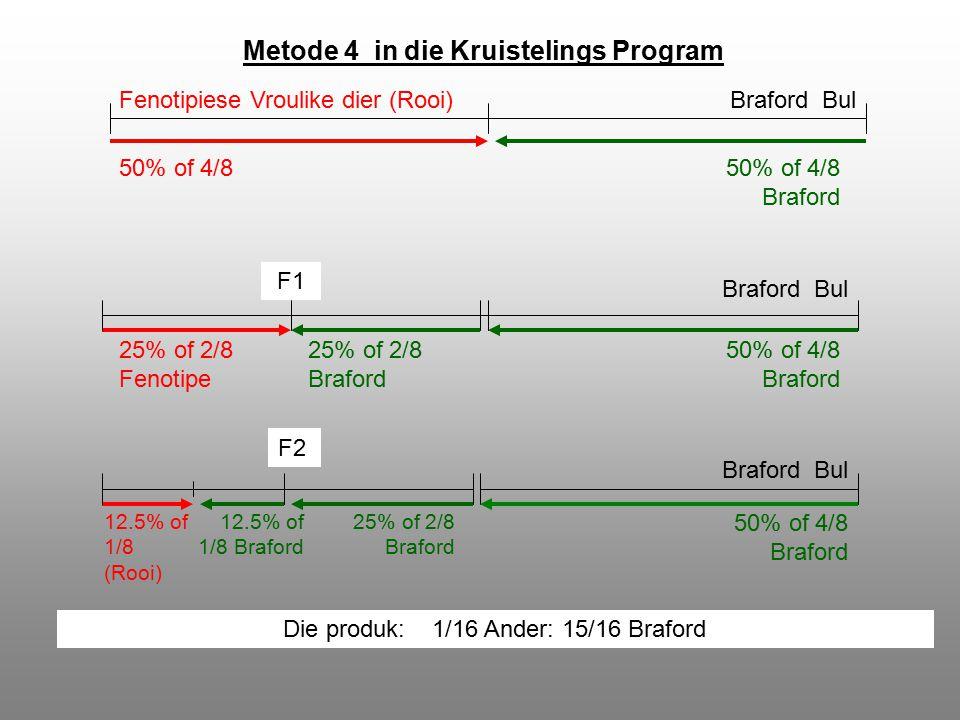 Metode 4 in die Kruistelings Program 50% of 4/850% of 4/8 Braford F1 50% of 4/8 Braford 25% of 2/8 Fenotipe 25% of 2/8 Braford F2 25% of 2/8 Braford 12.5% of 1/8 Braford 12.5% of 1/8 (Rooi) 50% of 4/8 Braford Braford Bul Die produk: 1/16 Ander: 15/16 Braford Fenotipiese Vroulike dier (Rooi)