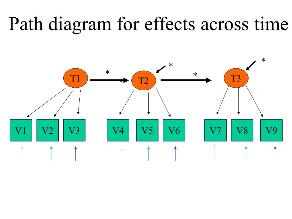 V1V6V2V3V4V5V7V8V9 T1T3 T2 * * * * * Path diagram for effects across time