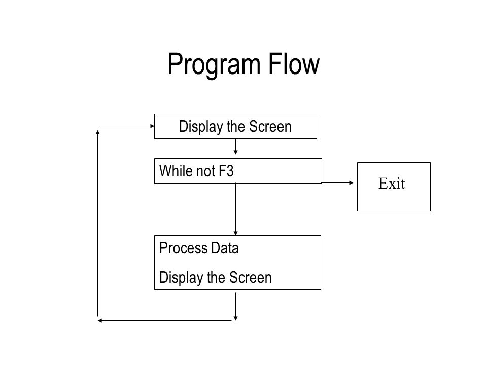 Program Flow Display the Screen While not F3 Process Data Display the Screen Exit