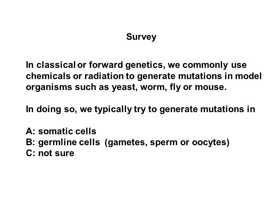 Survey In classical or forward genetics, we commonly use chemicals or radiation to generate mutations in model organisms such as yeast, worm, fly or mouse.