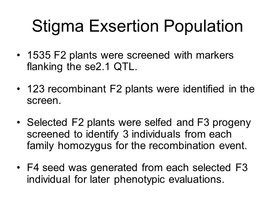 Stigma Exsertion Population 1535 F2 plants were screened with markers flanking the se2.1 QTL.