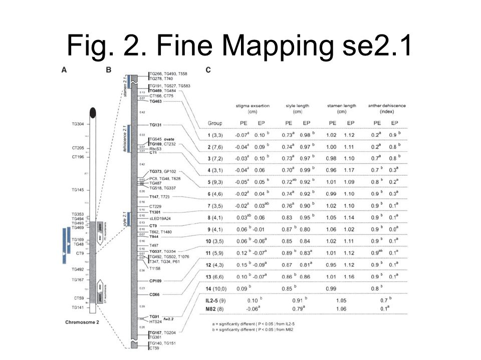 Fig. 2. Fine Mapping se2.1