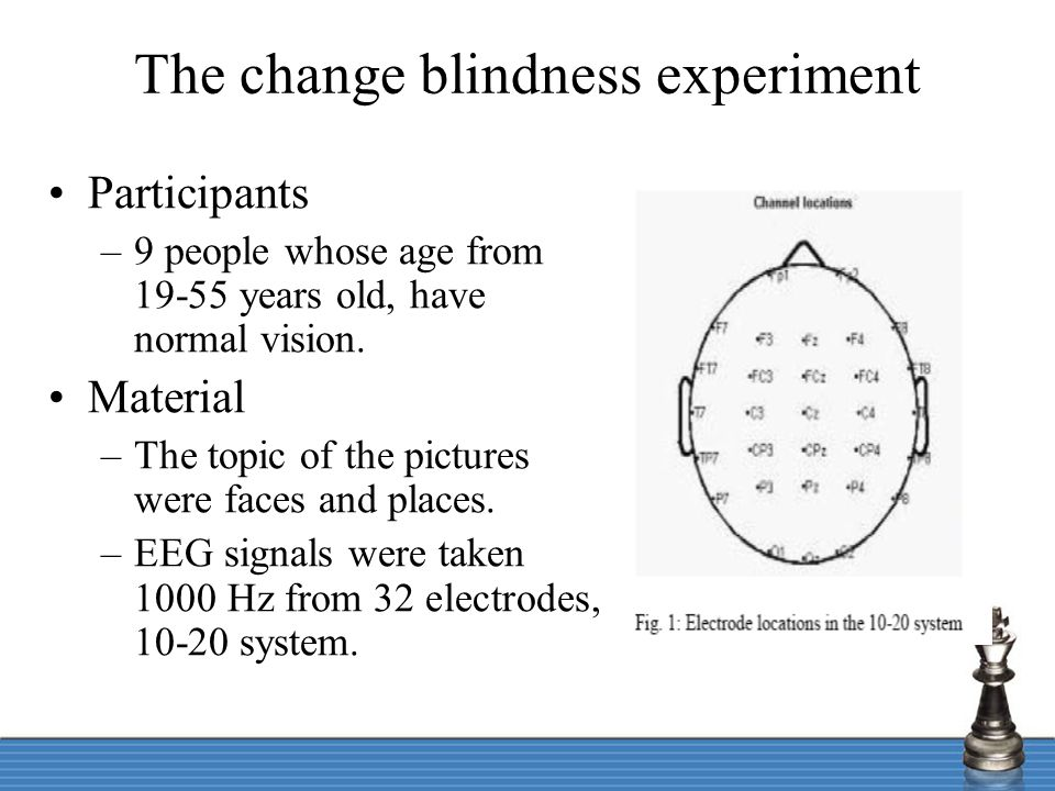 The change blindness experiment Procedure (Main task was to detect a change in the pictures between the two stimulus.) –Step 1: first stimulus included two pictures, display for 500 ms.