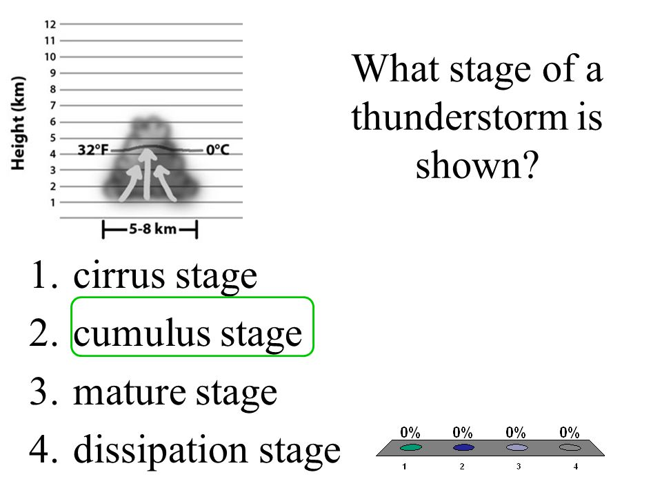 What stage of a thunderstorm is shown? 1.cirrus stage 2.cumulus stage 3.mature stage 4.dissipation stage