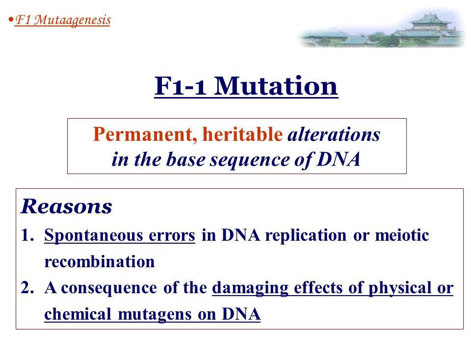 Mutation Replication Fidelity ( 复制的精确 性) Mutagens Mutagenesis (突变) (诱变剂) back