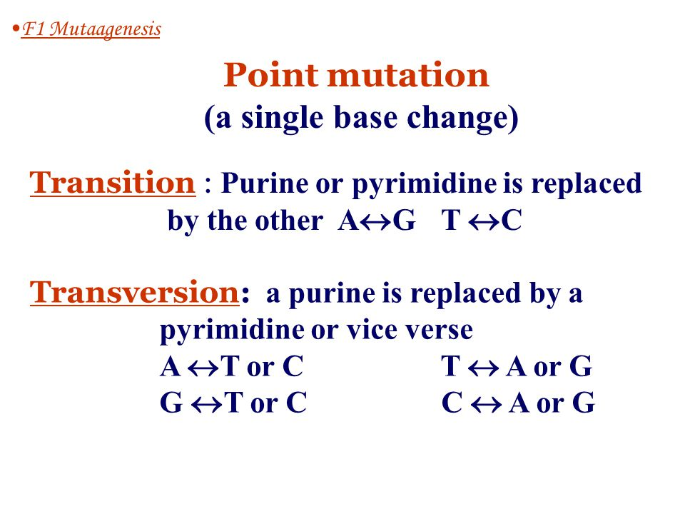 F1-1 Mutation F1 Mutaagenesis Permanent, heritable alterations in the base sequence of DNA Reasons 1.Spontaneous errors in DNA replication or meiotic recombination 2.A consequence of the damaging effects of physical or chemical mutagens on DNA